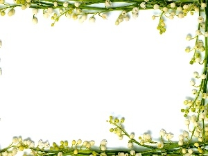 frame, lily of the Valley