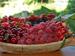 Fruits, fresh, dish, Red