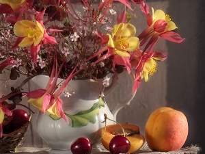 Vase, Fruits, Flowers