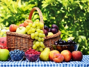basket, Garden, Fruits