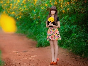 gerberas, Yellow, Women, Garden, bouquet