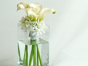 glass, flowers, composition, Vase, white
