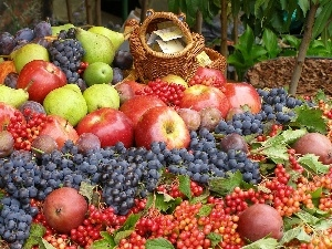 basket, grape, apples, harvest, truck concrete mixer