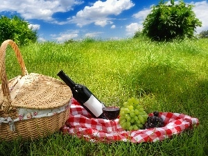Grapes, Wine, grass, picnic, basket