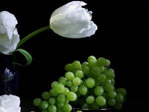 Grapes, green ones, White, Tulips