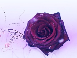 rose, graphics, dusted