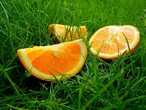 grass, Green, cuts, orange