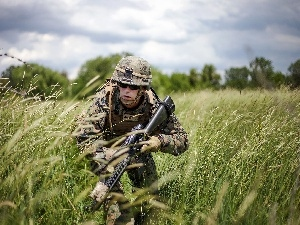 Weapons, grass, soldier