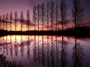 Great Sunsets, viewes, lake, reflection, trees