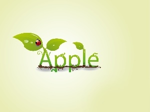 Apple, green ones