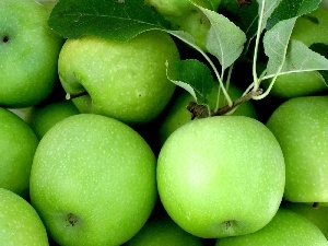 apples, green ones