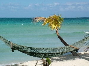 Hammock, Palm, sea, Beaches