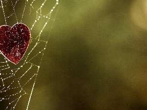 Red, Heart, Web
