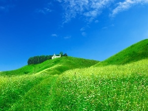 Home, Field, White, Green, Hill, grass