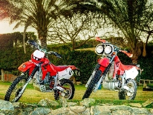 Palms, Honda XR, Two cars, Stones, Motorcycles