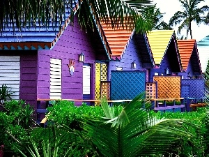 color, Houses, Maldives
