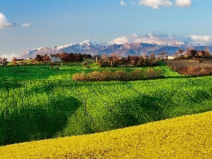 Italy, Mountains, Spring, field