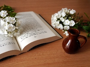 jug, phlox, Book, White