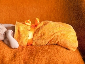 terry, Kid, Orange, little doggies, ribbon, Sleeping