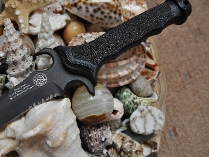 knife, Shells