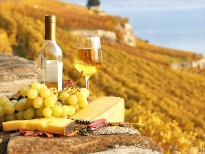 knife, Yellow, Grapes, Wine, cheese