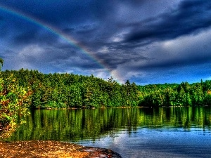 lake, forest, Great Rainbows