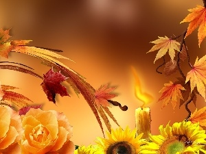Leaf, Nice sunflowers, autumn, roses