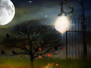 Leaf, trees, picture, moon, Gate