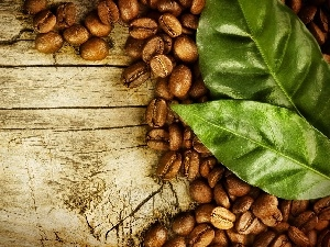coffee, leaves, grains