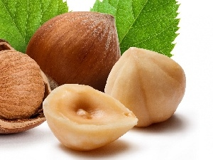 hazelnuts, leaves, nuts
