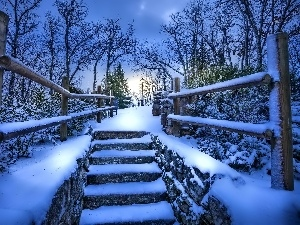 Lighthouse, Stairs, winter, Park