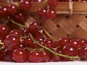 currants, Lubyanka, Red