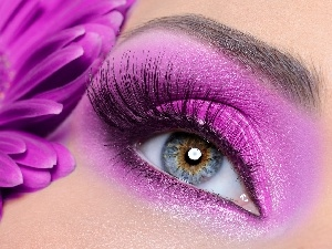 make-up, Gerbera, eye