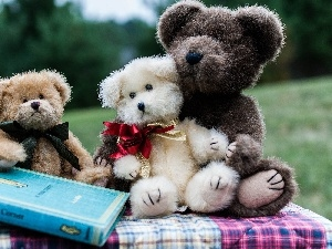 Meadow, Book, Stuffed Animals, Park, Bears