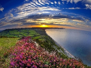 Meadow, Sky, sea, Coast