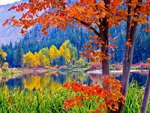 Mountains, lake, autumn, Park