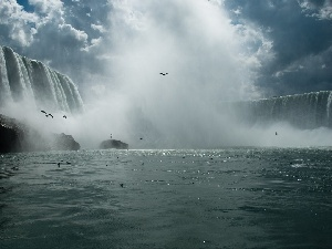Niagara Falls, birds, waterfall