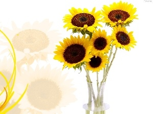 Vase, Nice sunflowers