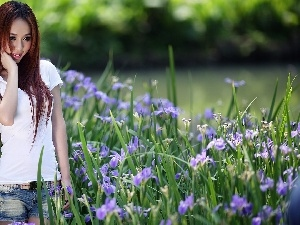 Park, flowerbed, girl, Irises