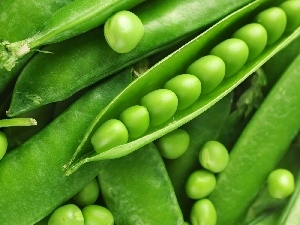 green, pea, pods