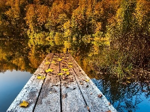 pier, lake, trees, Leaf, viewes