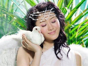 pigeon, aloe, girl, make-up