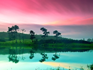 Pink, trees, viewes, lake, Sky, reflection