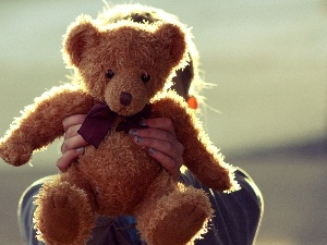 plush toy, Kid, teddy bear