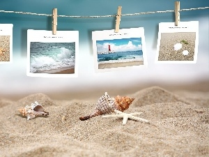 postcards, Sand, Beaches, Shells