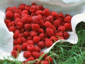 napkin, Raspberries, grass