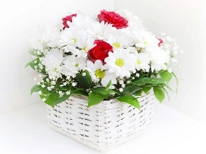 Red, daisy, basket, roses, White
