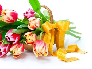 ribbon, basket, bouquet, tulips