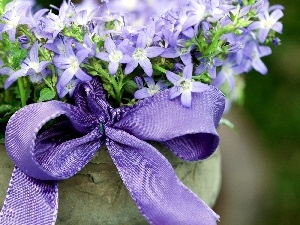 ribbon, flowers, bouquet, Blue