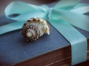 ribbon, shell, Old, Book